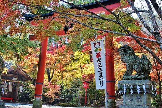 京都府亀岡市にある「鍬山神社」