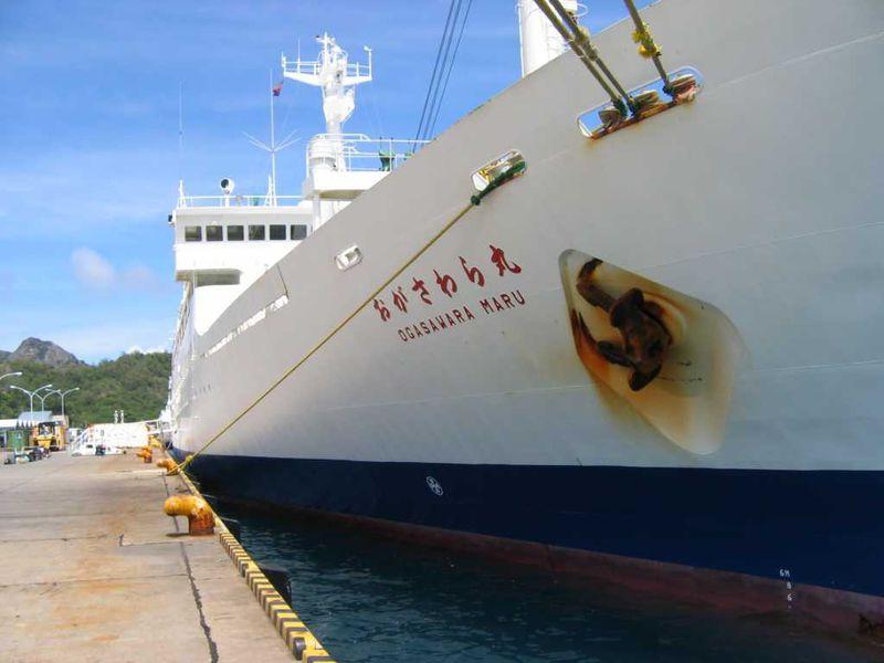 東洋のガラパゴス「小笠原諸島・父島」その1 遥かなる島への船旅