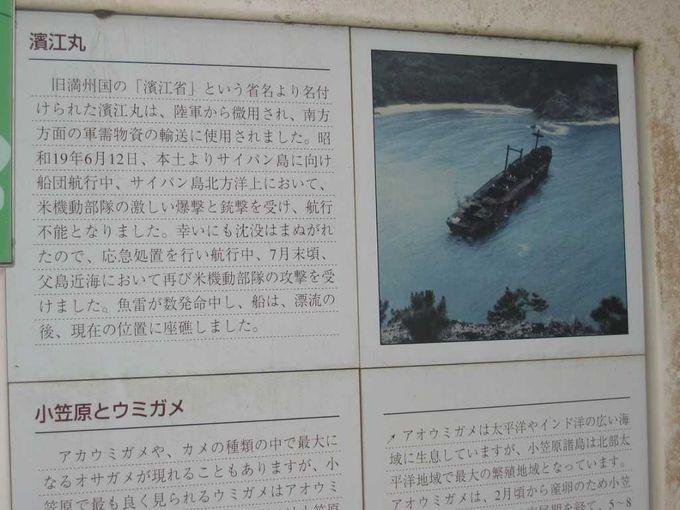 戦争遺物の宝庫・小笠原諸島