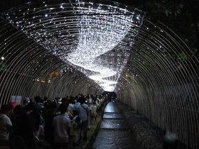 """""""願いを京都に"""" 夏の京都ライトアップイベント「京の七夕」"""