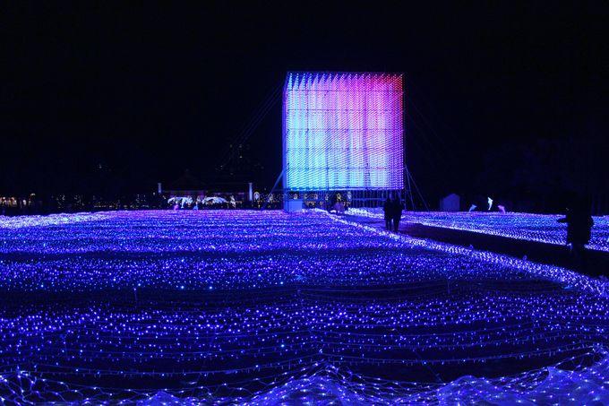 広大な庭園を彩る「ビッグブルー」&「ビッグキューブ」