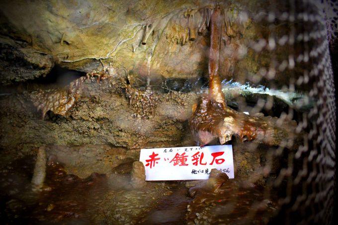 学術上貴重な鍾乳石も多数アリ