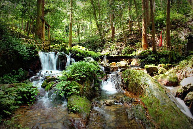 『瓜割の滝』は小さな滝