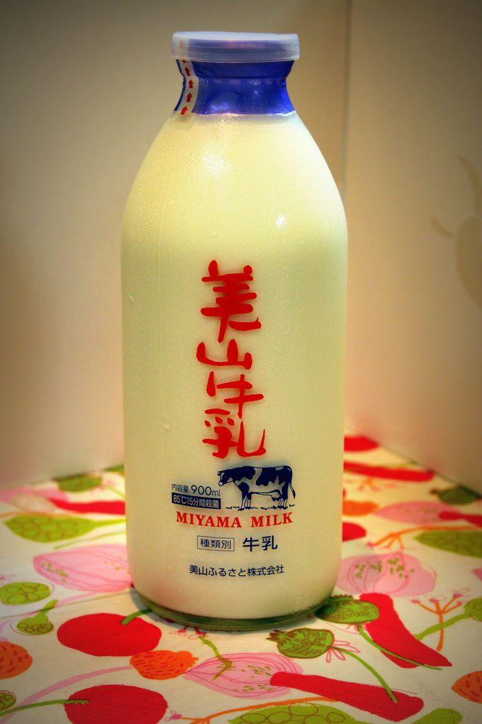 美山牛乳など、乳製品もお持ち帰りしよう!