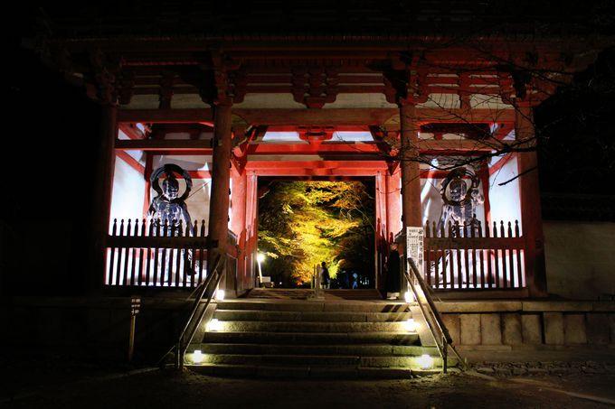 乱立する京都の紅葉ライトアップ