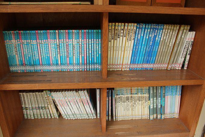 森の中の小さな図書館『森の文庫』