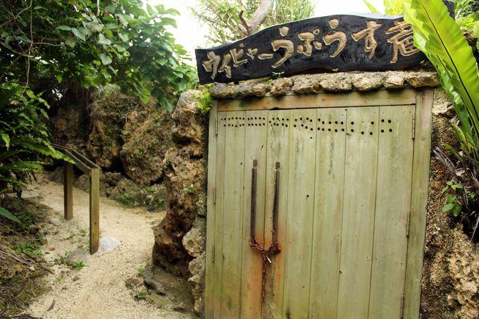 多良川の洞窟貯蔵庫「ういぴゃーうぷうす蔵」