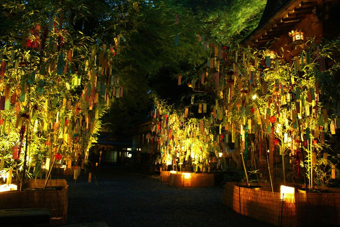 夏の夜を彩る、貴船神社の「七夕笹飾りライトアップ」
