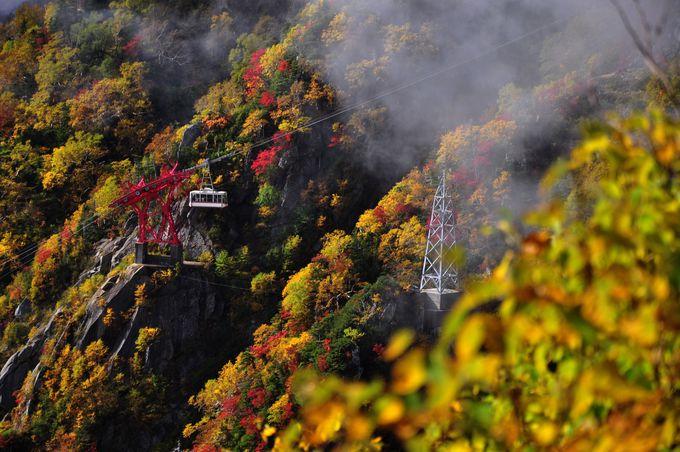 日本最高所のロープウェイで千畳敷カールへ向かえ!