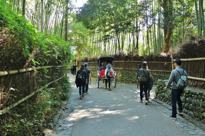 人力車のある風景が映える「嵯峨野の竹林」