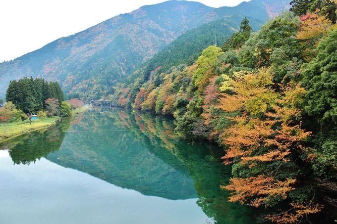 清流・板取川もまた美しい!