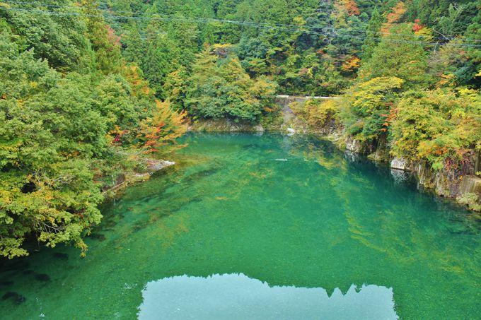 豊かな森が産む、清涼なる流れ