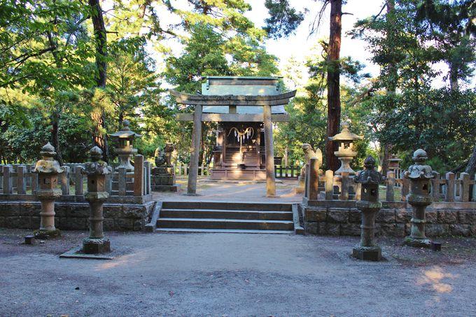 天橋立内唯一の神社「天橋立神社」はパワースポット