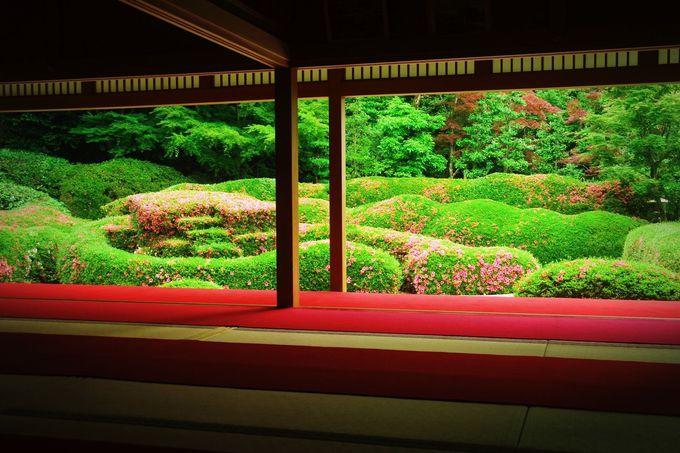 滋賀に名庭園あり!「大池寺・蓬莱庭園」