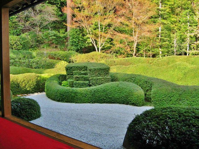 「蓬莱庭園」の見どころは?