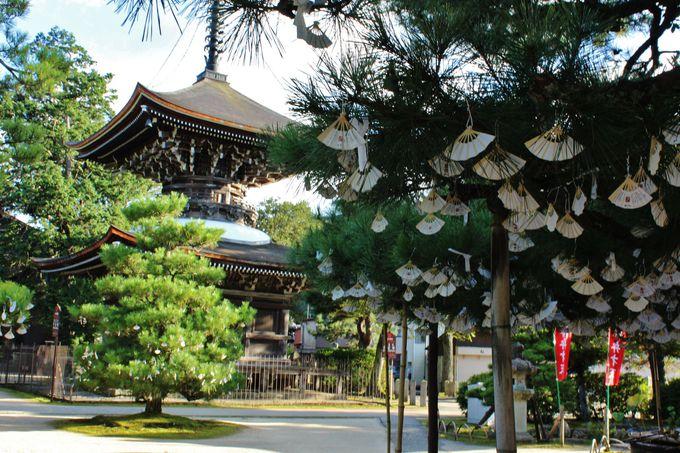 扇子が咲き乱れる「智恩寺」の境内