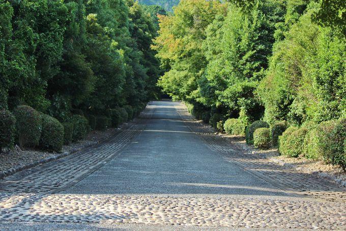 実は京都最古の天皇陵である「天智天皇 山科陵」
