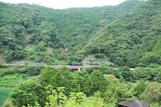 椿山ダム周辺はヤッホーポイントの宝庫!
