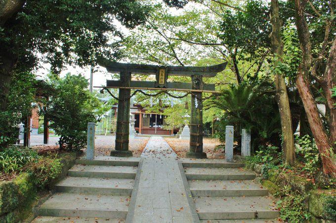 出迎えるのは普通の鳥居「淡島神社」