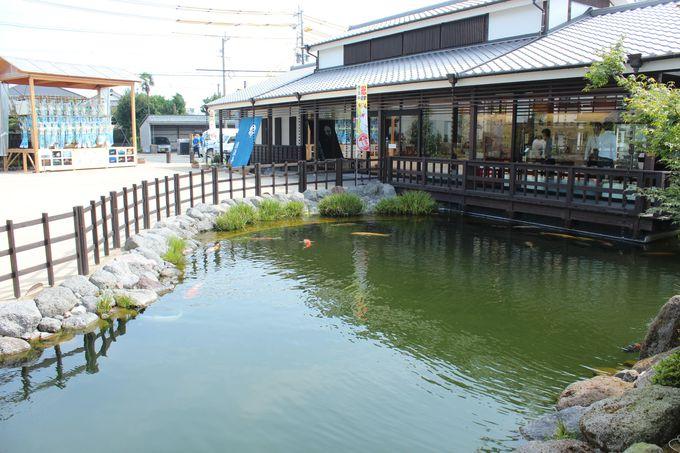 鯉の泳ぐまちの新スポット「清流園」