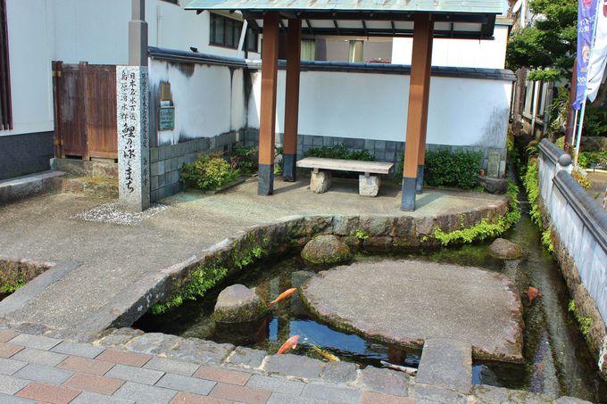 「湧水庭園 四明荘」は「鯉の泳ぐまち」にあり!