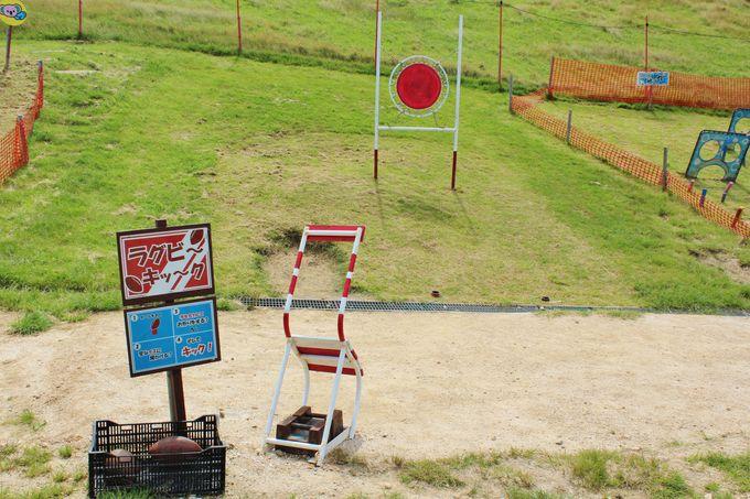手作り遊具が無料で楽しめる!「笹平遊びの広場」