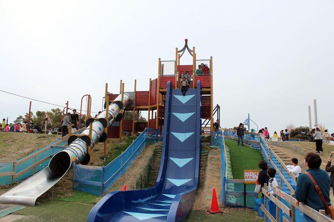 「びわ湖こどもの国」には冒険心をあおる遊具が多し!