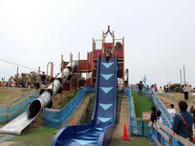 「びわ湖こどもの国」の垂直落下式滑り台が怖すぎて話題!