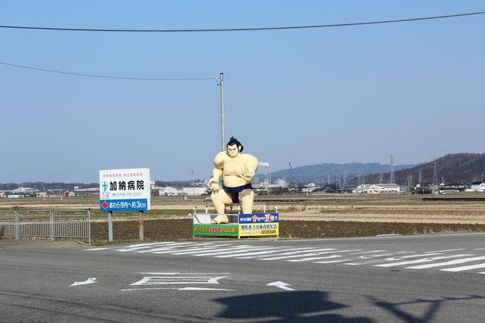 大関「淵龍関」が見守る交差点。