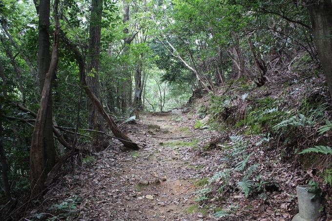 伏見にある大岩山の歴史