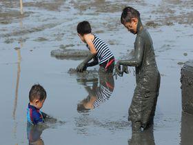 佐賀「道の駅鹿島」で有明海の干潟を楽しもう!ガタ遊びのメッカはここ!