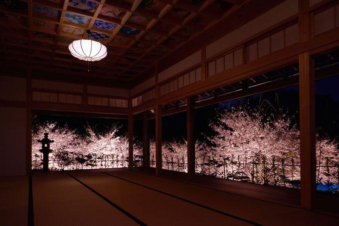 客殿で「正寿院」ハートの窓を存分に堪能しよう
