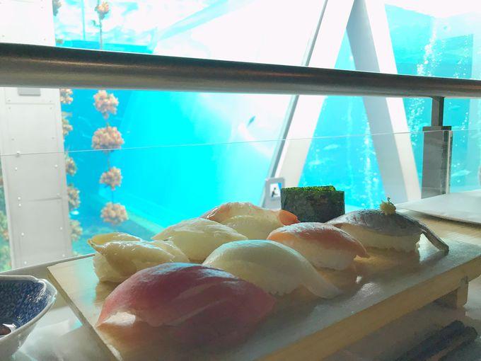 魚を食べられる水族館!?