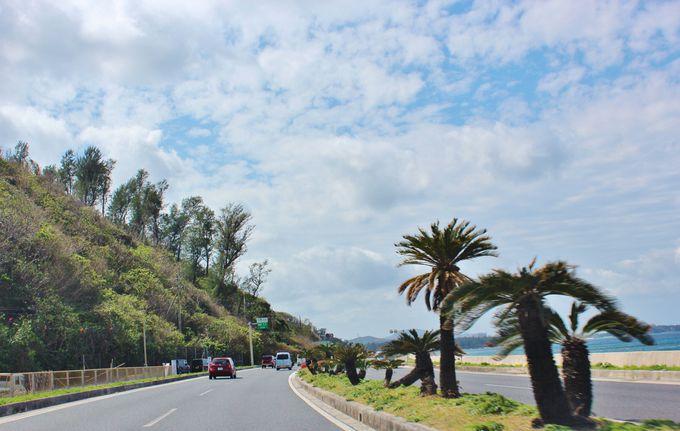 慣れ親しんだ沖縄。でもちょっと違う沖縄を。