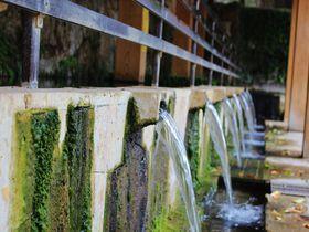 沖縄の湧水スポット「金武大川(ウッカガー)」は長命の泉!
