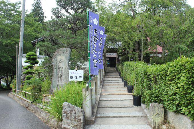 亀岡「谷性寺」は光秀ゆかりの寺