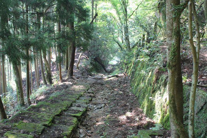 愛宕神社参拝への道