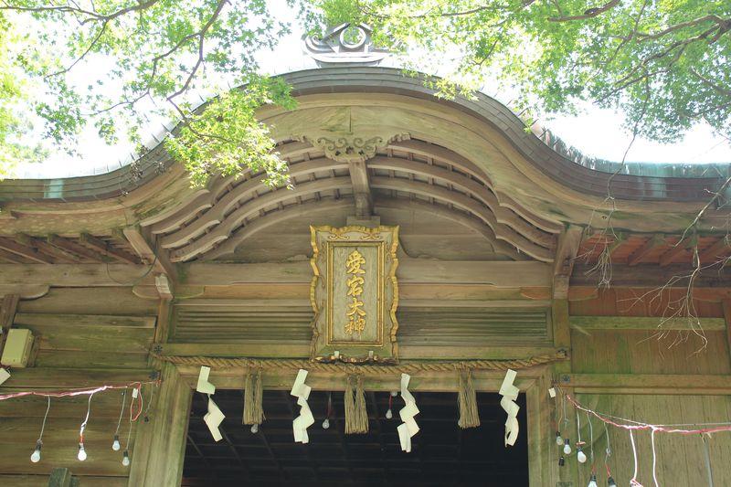 京都「愛宕神社」へ参拝!火の神様・愛宕山に登ろう