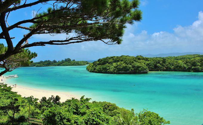 魅惑の離島、石垣島