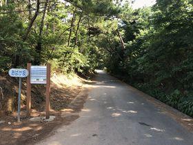 車が勝手に坂道を登る?久米島「おばけ坂」のミステリーを体験しよう