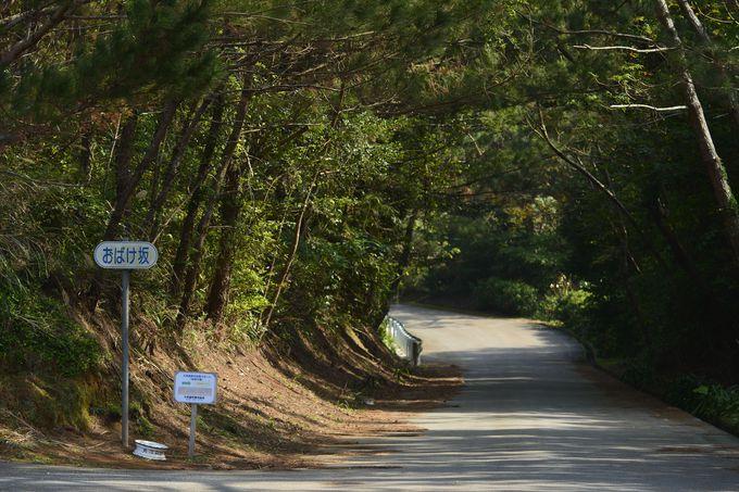 美しき久米島にある謎のミステリースポット
