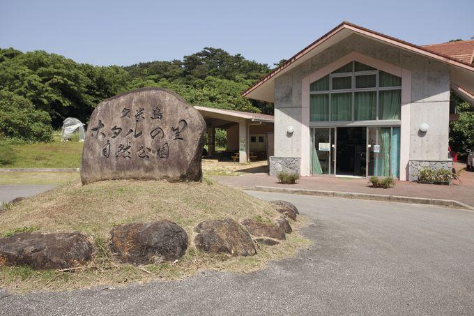 久米島の自然を守る「久米島ホタル館」
