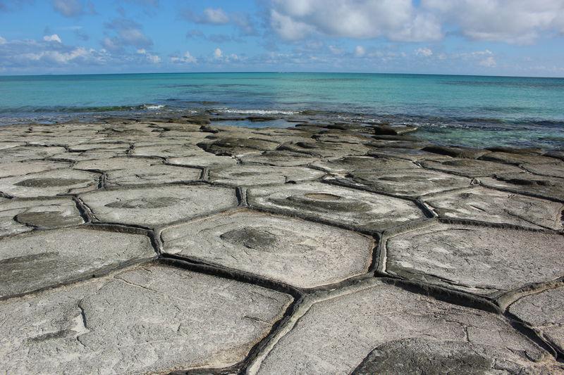 一面が亀の甲羅!?久米島「畳石」で出会う自然の造形美