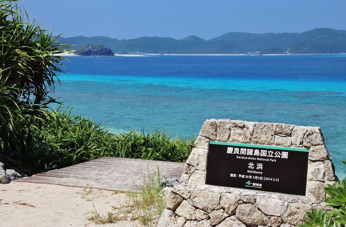 慶良間諸島を代表するビーチのひとつ「ニシバマ」