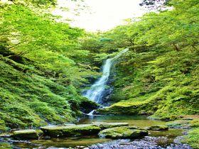 若狭地方最大の落差!福井「野鹿の滝」の涼感に癒されよう