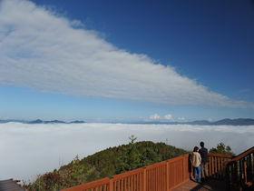 新名所!京都「かめおか霧のテラス」から丹波霧の雲海を眺めよう