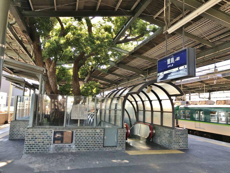 京阪電鉄「萱島駅」は巨大なクスノキと共存する駅!