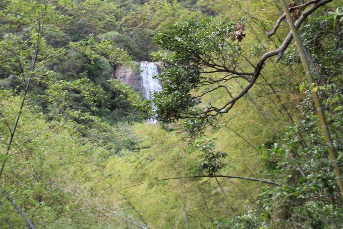 一の滝・二の滝も眺めてみよう