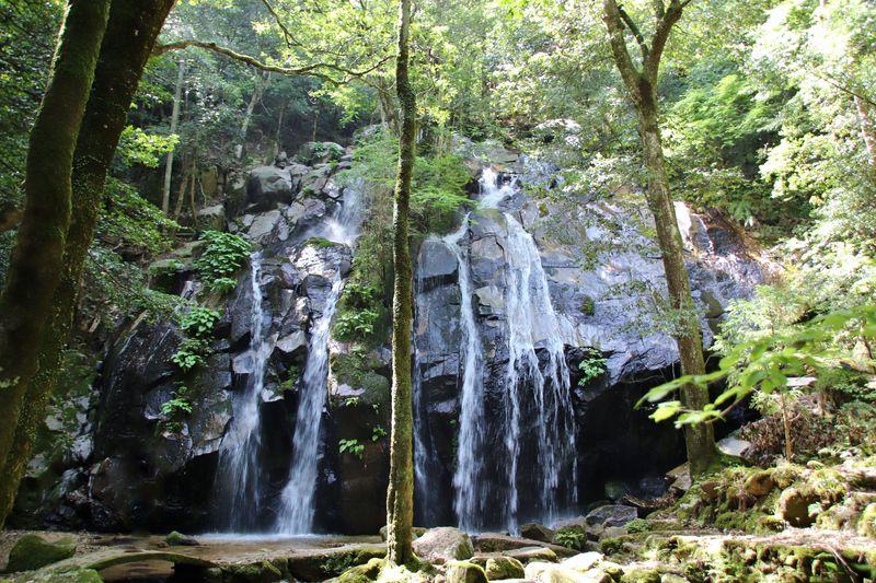 京都屈指の名瀑!「金引の滝」でリフレッシュしよう