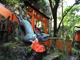 名前だけで行ってみたくなる京都の神社まとめ
